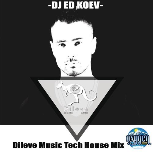 Dileve Tech House Mix 2016